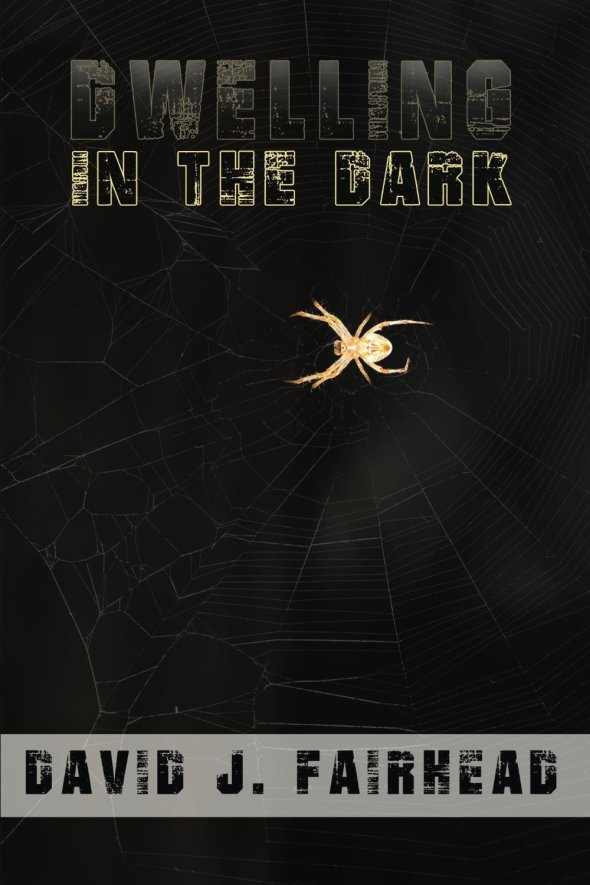 Dwelling in the Dark by David J. Fairhead